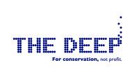 the deep hull