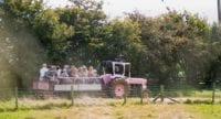 pink pig farm may half term 2019