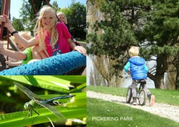 free days out hull pickering park