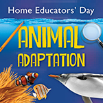 Home Educators Day The Deep