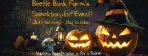 beetlebank farm york halloween event for families, october 2020