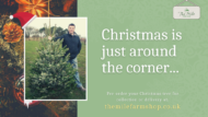 mile farm shop pocklinton christmas trees